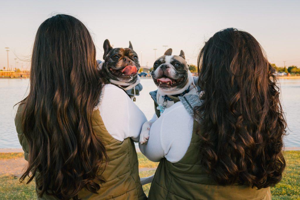 Gottman Therapy Method for understanding couples bids